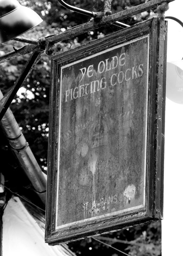 Fighting Cocks Pub Sign in St Albans