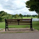St Albans Verulamium Park bench