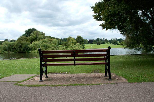 Verulamium Park Bench in St Albans