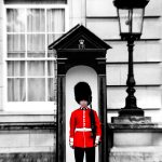 Red Soldier